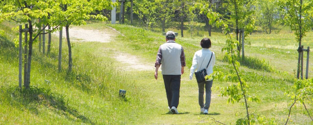 散歩するおしどり夫婦